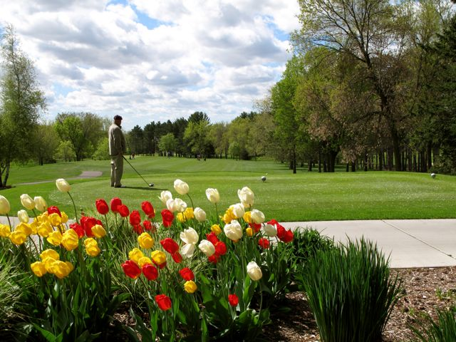 Image result for Springtime golf