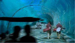 Underwater golf path